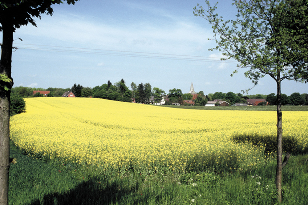 Kastorf,Gewerbegrundstücke ImB-Plan Nr. 18
