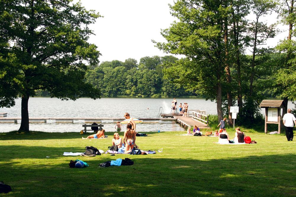 Badezeit am Behlendorfer See