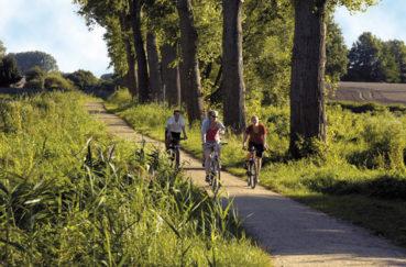 Kreis Saniert Rad-/Wanderweg Am Elbe-Lübeck-Kanal – Geänderte Streckenführung Während Der Bauzeit
