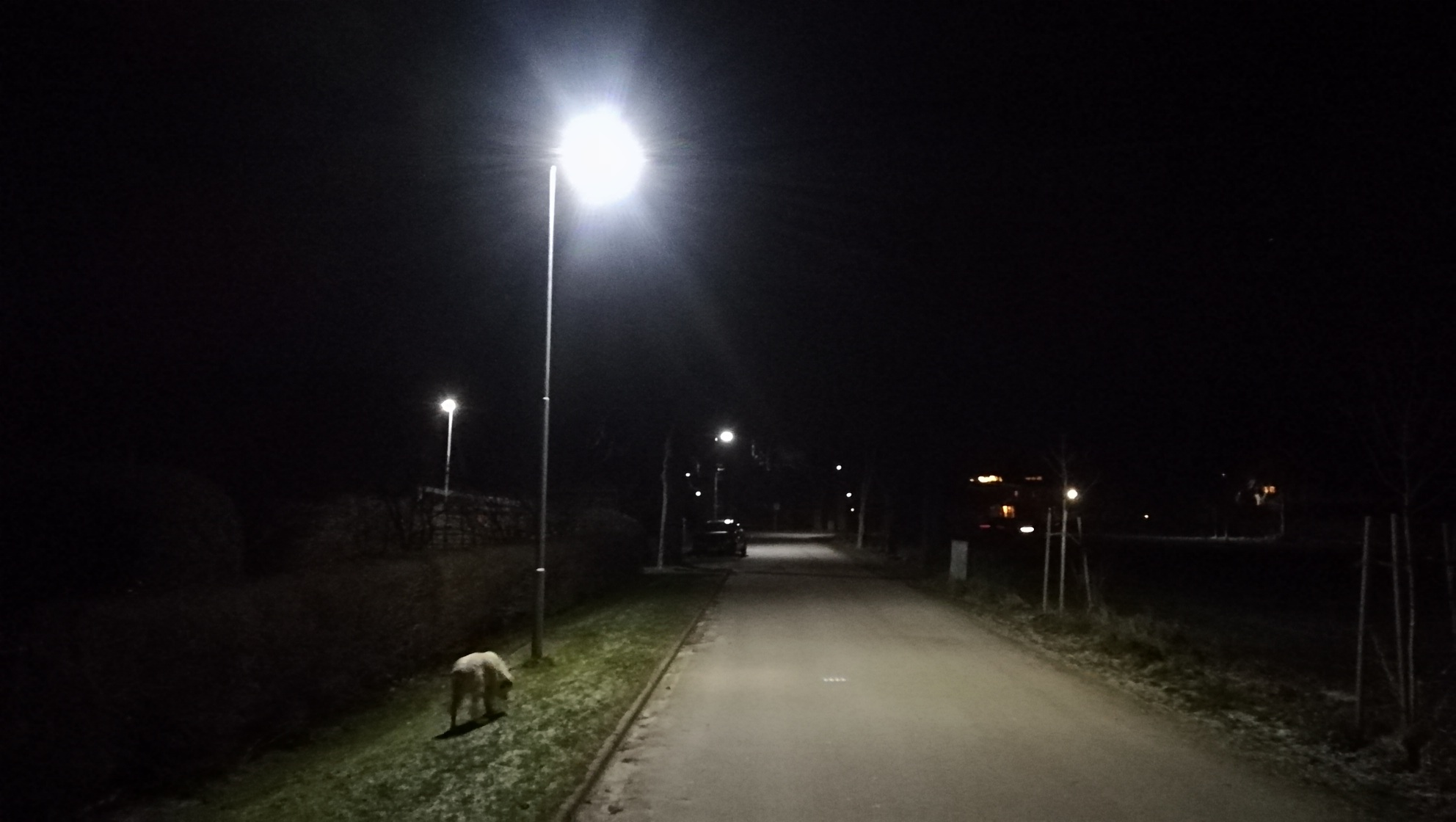 Investition In Straßenbeleuchtung Entlastet Bliestorfer