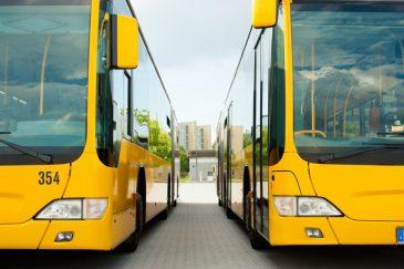 Busverkehr In Der Region – Fahrplan Wird Im Amtsbezirk Verteilt