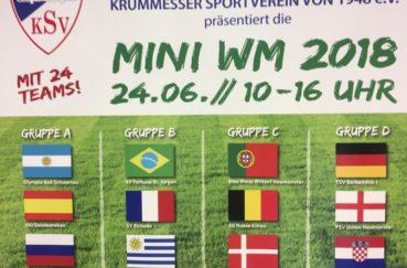 Krummesser SV Ist Veranstalter Von Mini-WM Am 24. Juni In Groß Schenkenberg
