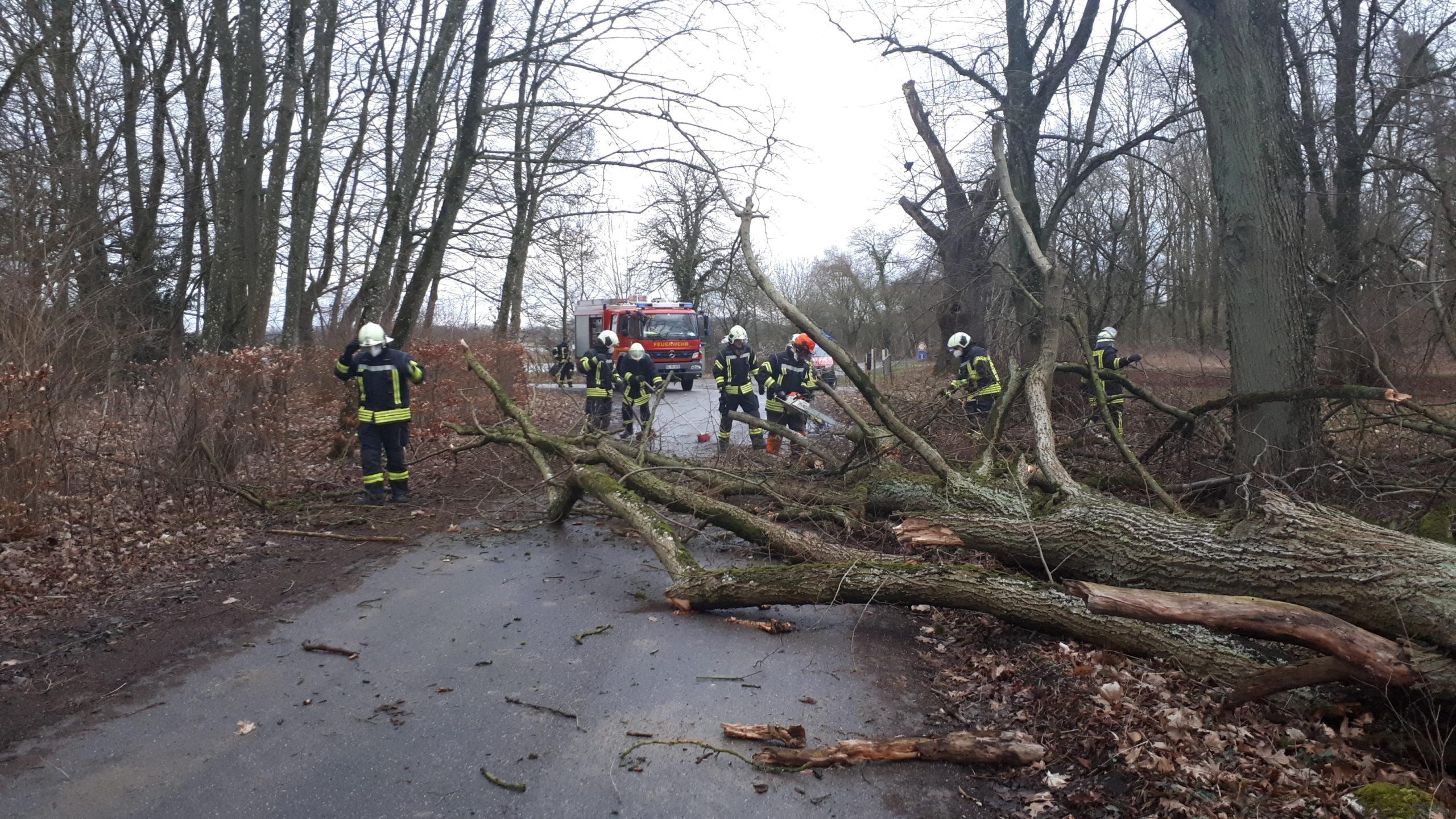 Heftiger Sturm Löste Am Donnerstag Auch Feuerwehr-Einsätze Aus. FFW Bliestorf Und Rondeshagen Mussten Ausrücken.